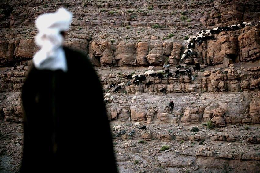 Xavier Zimbardo Maroc Transumance (200)