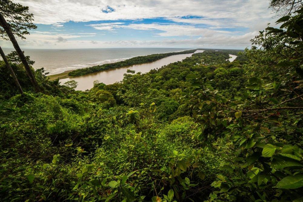 photo mangrove costa rica