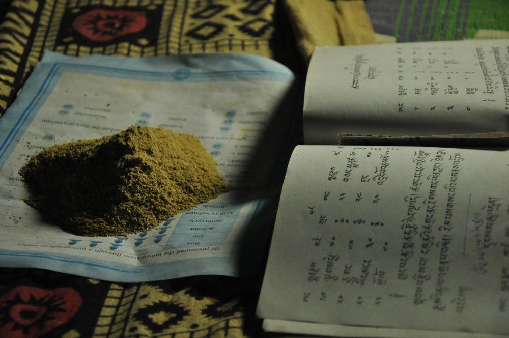 médecine Ladakh culture croyances