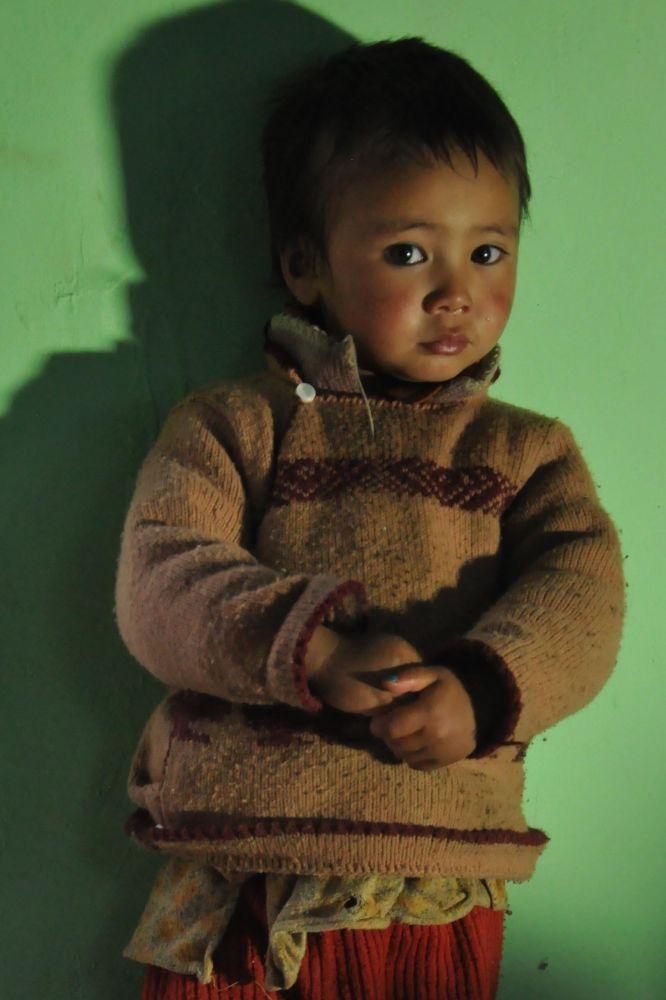 Petit garçon ladakhi, petit-fils du médecin amchi
