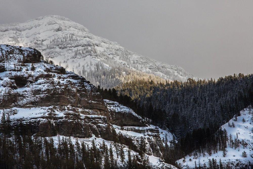 Photo voyage Yellowstone 23