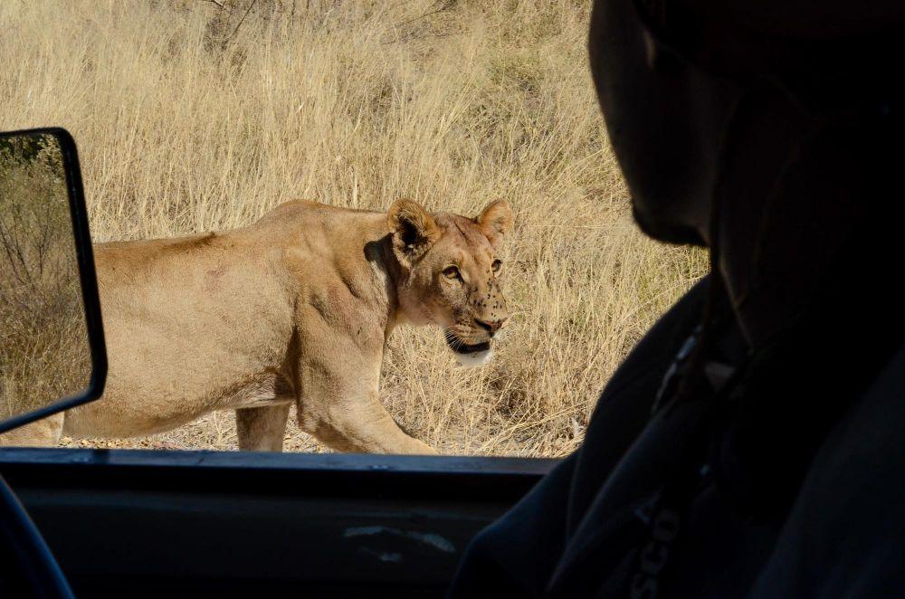 Photo voyage Botswana 22