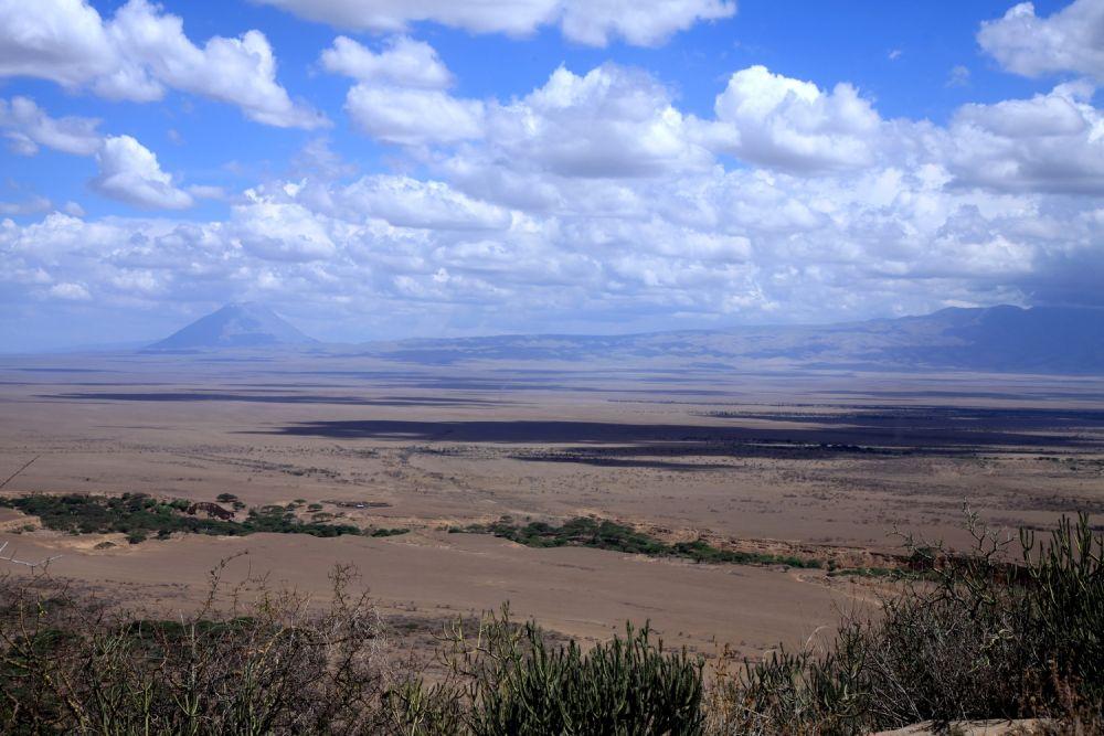 Randonnée vue sur plaine avec le volcan Lengaï en arrière plan - Pays Maasaï