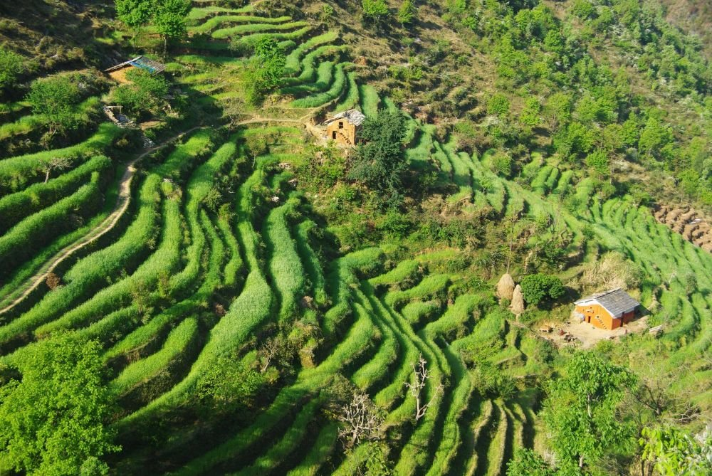 Photo voyage Népal 4
