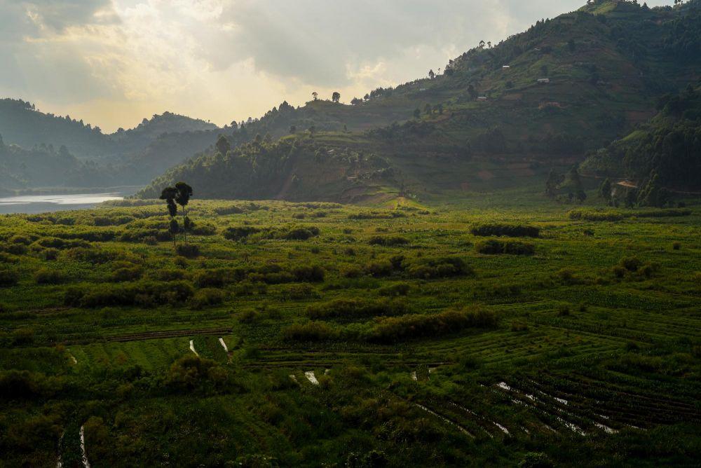 Photo voyage Ouganda 20