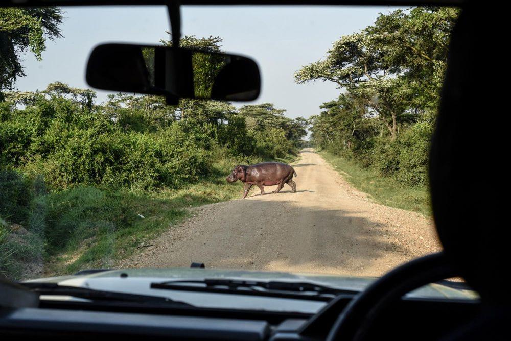 Photo voyage Ouganda 27