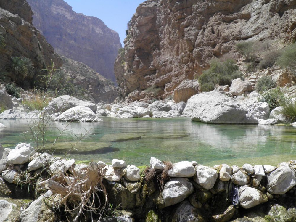Vasque dans le wadi Tiwi