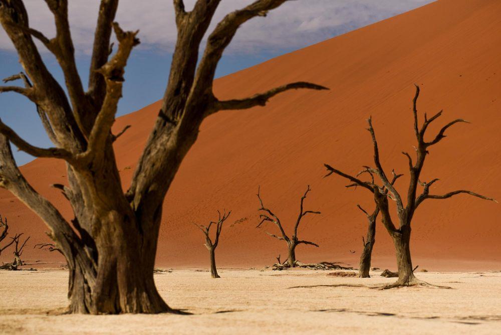 Photo voyage Namibie 20