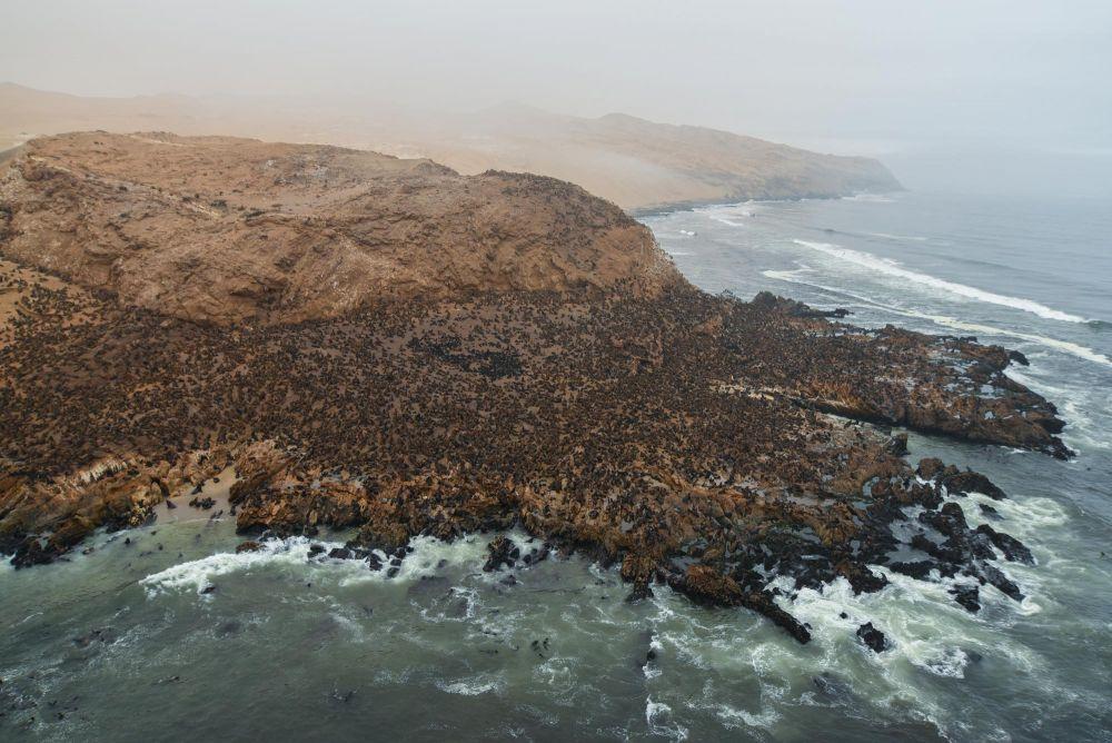 Photo voyage Namibie 25
