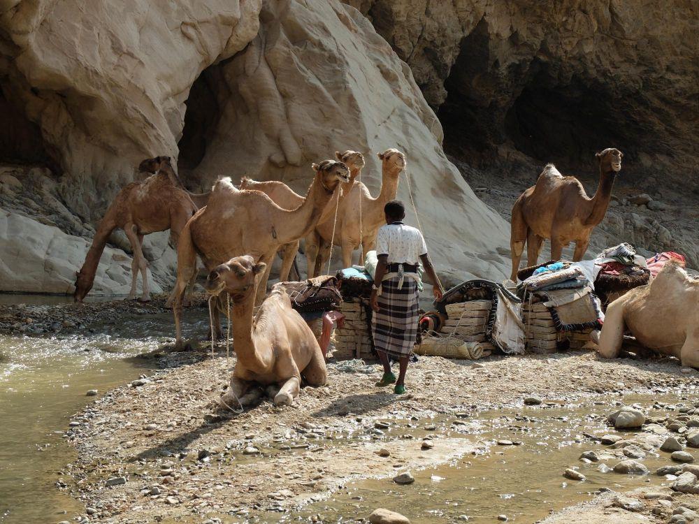Photo voyage Éthiopie 15