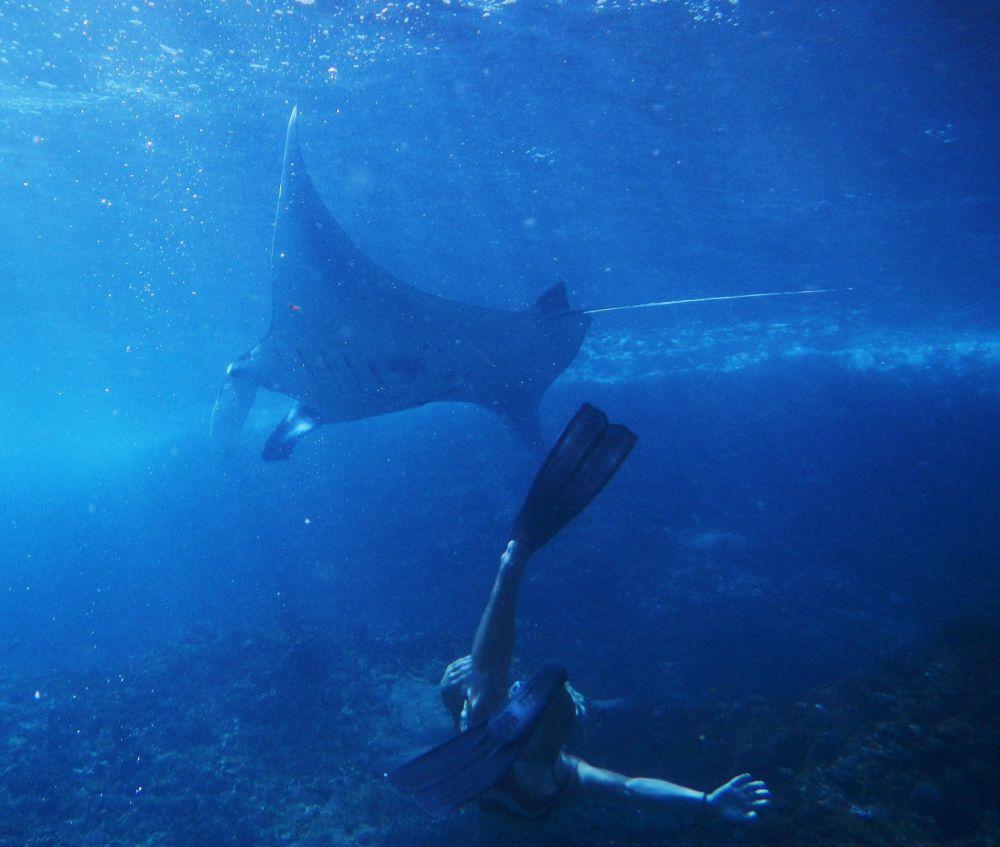 Photo voyage Indonésie 13