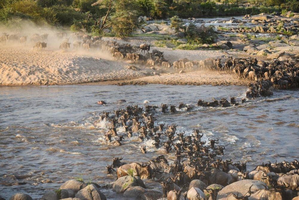 Photo voyage Tanzanie 8