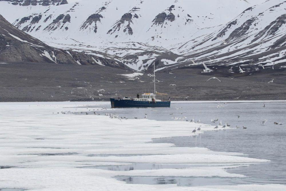 Photo voyage Spitzberg 12