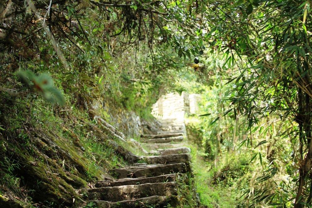 arrivée à l'Inti Punku, la porte du soleil, chemin de l'Inca, Machu Picchu, Pérou