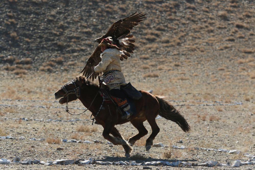 Festival des aigliers de l'Altaï, en Mongolie