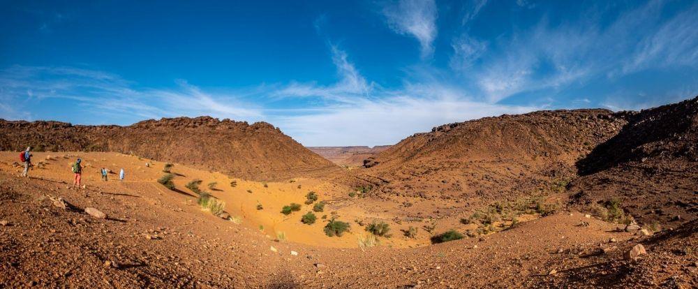 Dunes, Oasis et palmeraie