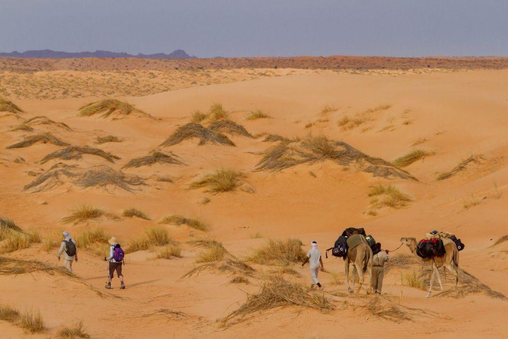 Randonnée au coeur des dunes