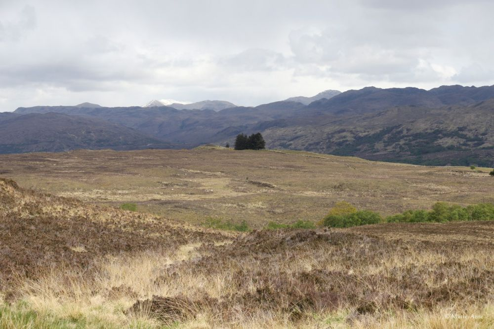 Paysage Highlands Ecosse