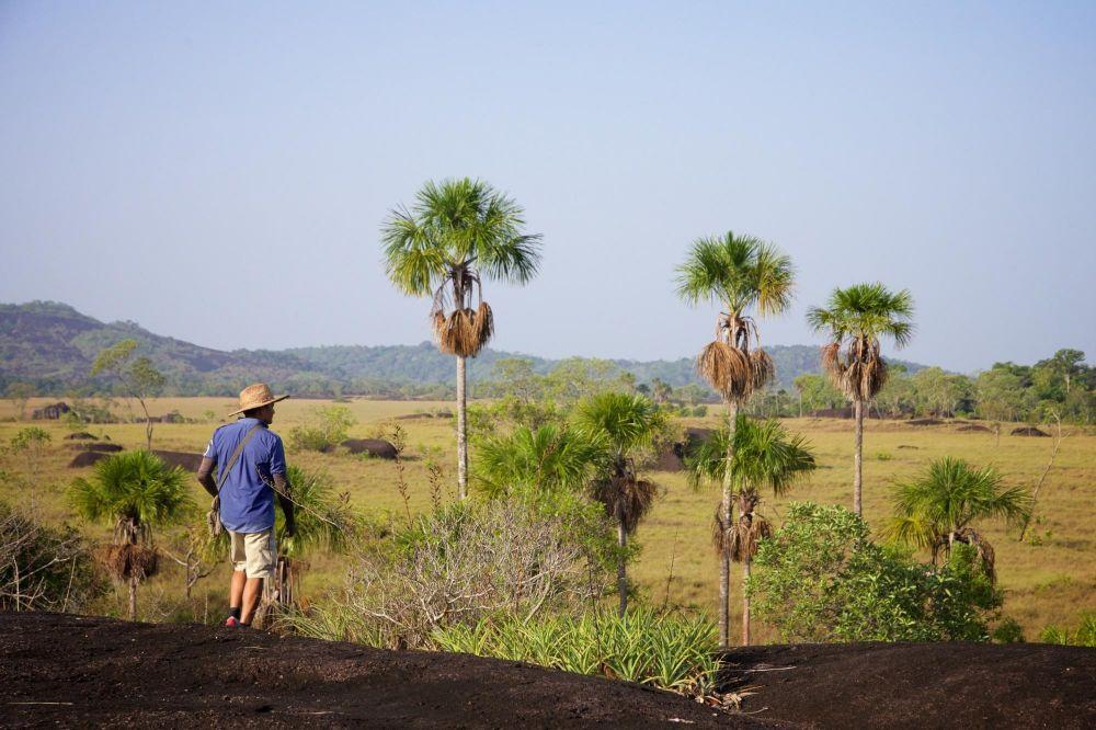 A pied dans la savane des Llanos de Colmobie