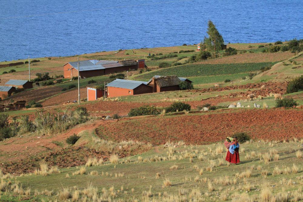 village, péninsule de Chucuito, Lac Titicaca, Pérou