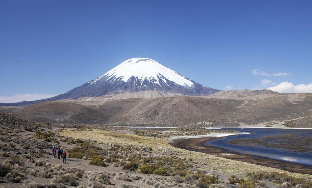 Volcan Parinacota, réserve de Lauca, Chili