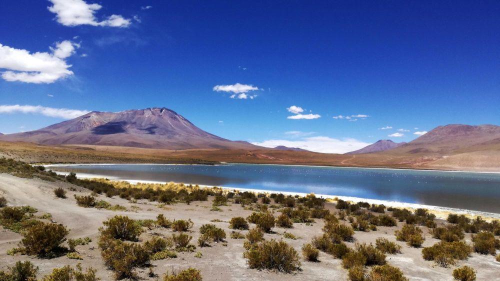 Lagune de l'Altiplano, Bolivie