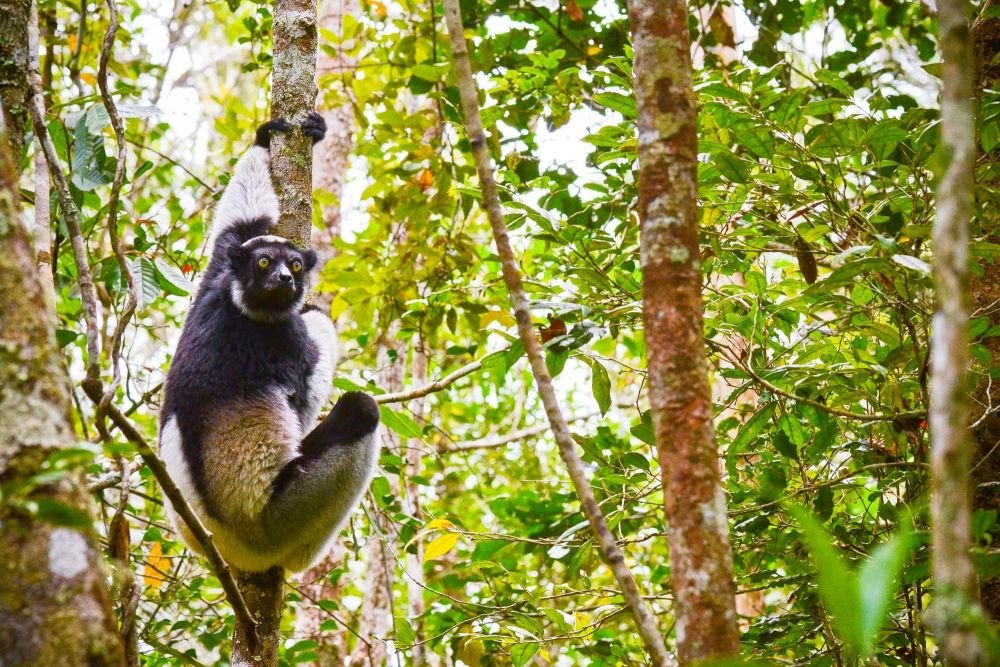 Photo voyage Madagascar 3