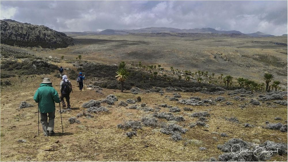 Photo voyage Éthiopie 10