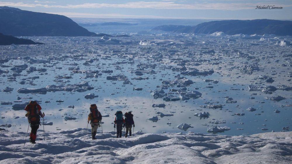 Fjord recouvert d'icebergs au Schweizerland au Groenland