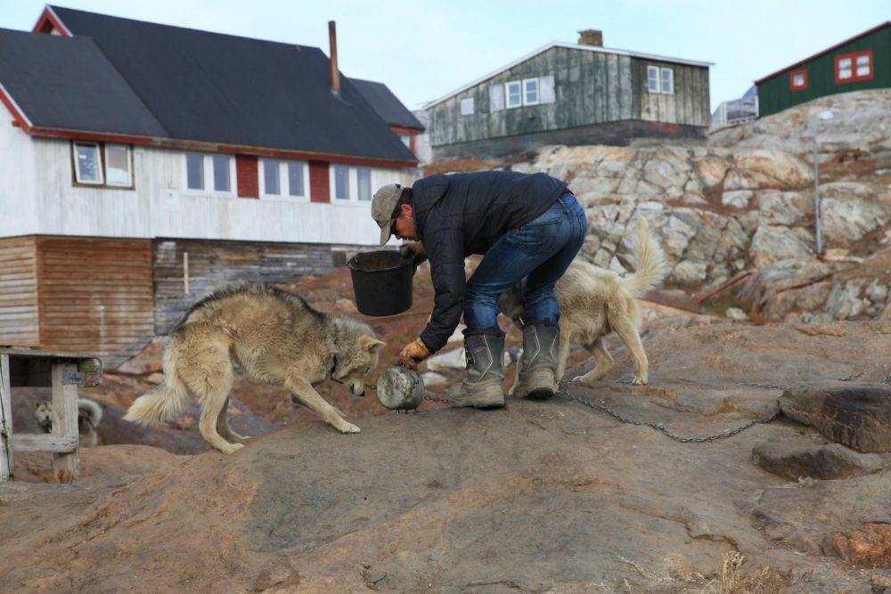 L'heure du repas à Tiniteqilaaq au Groenland