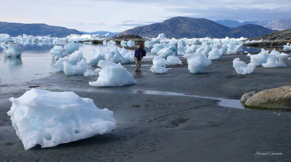 Trek au milieu des glaces à marée basse au Groenland