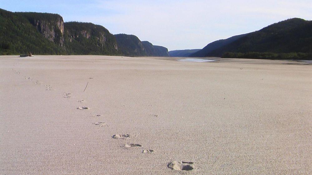 Plage de sable fin près du Lac Saint Jean au Québec au Canada