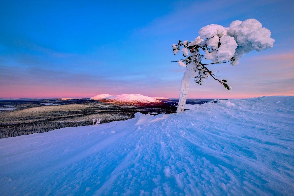 Séance photo en Laponie au lever du jour