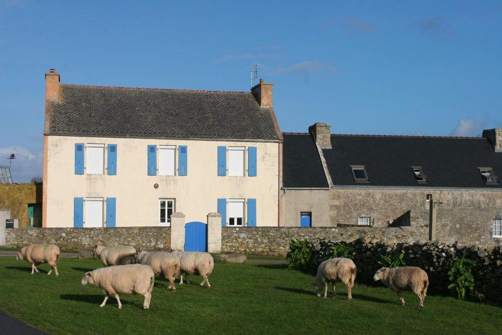 Habitat btraditionnel d'Ouessant