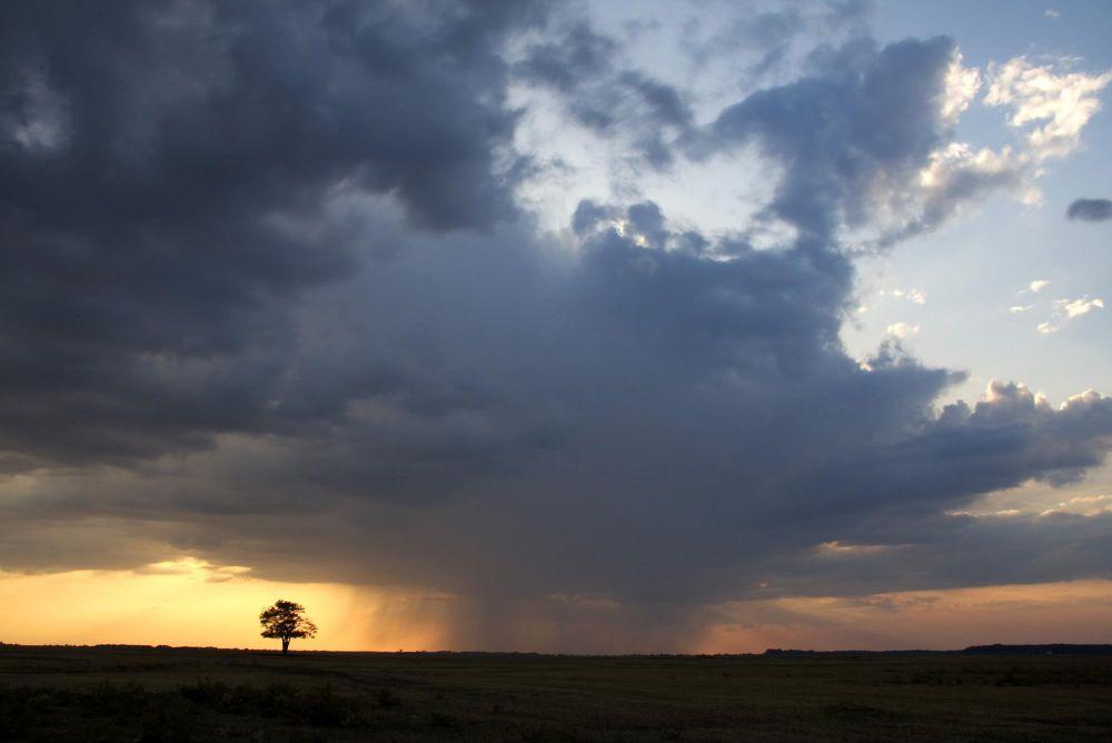 Storm on the puszta by Attila Szilágyi