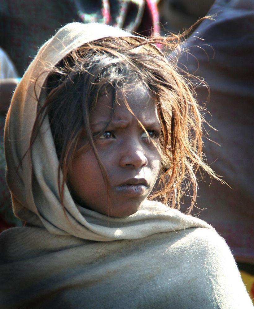 Isabelle Forest Inde Gange (1)