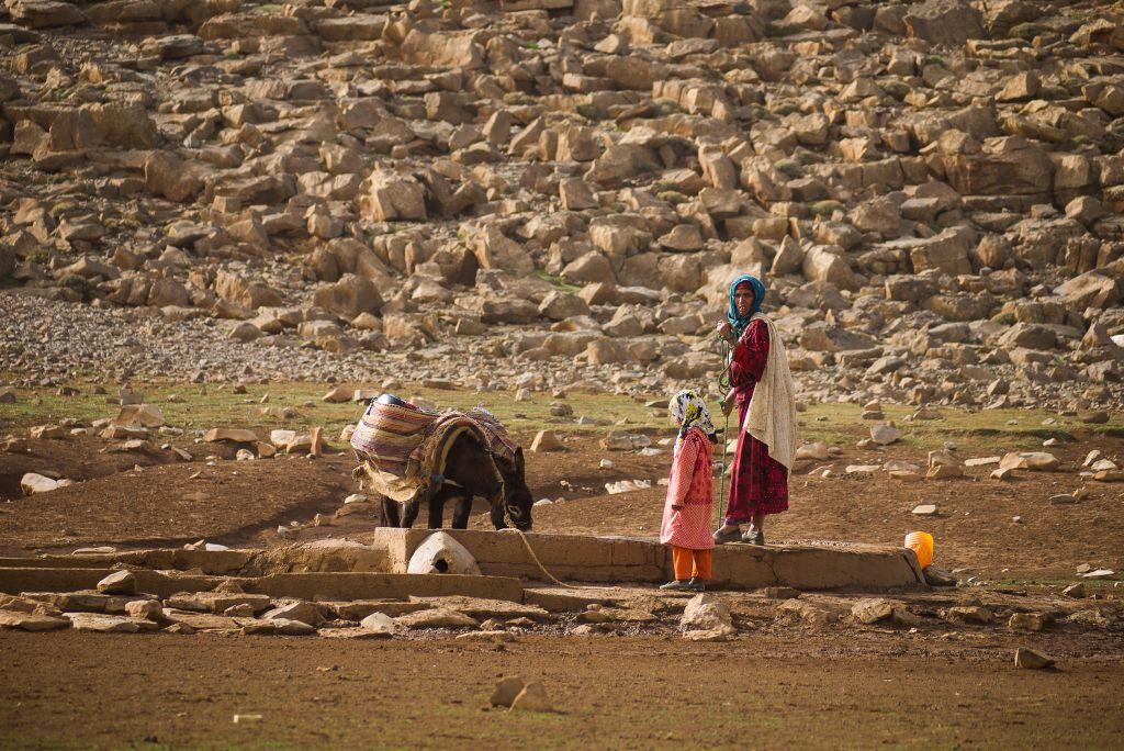 deux femmes et leur âne