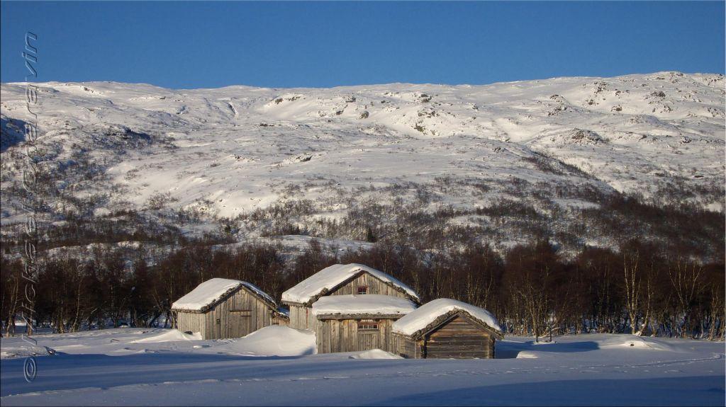 paysage de chalets enneigés
