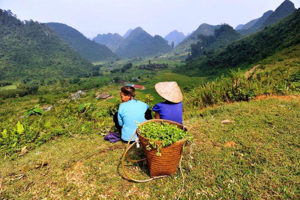 deux villageoises assises dans les champs