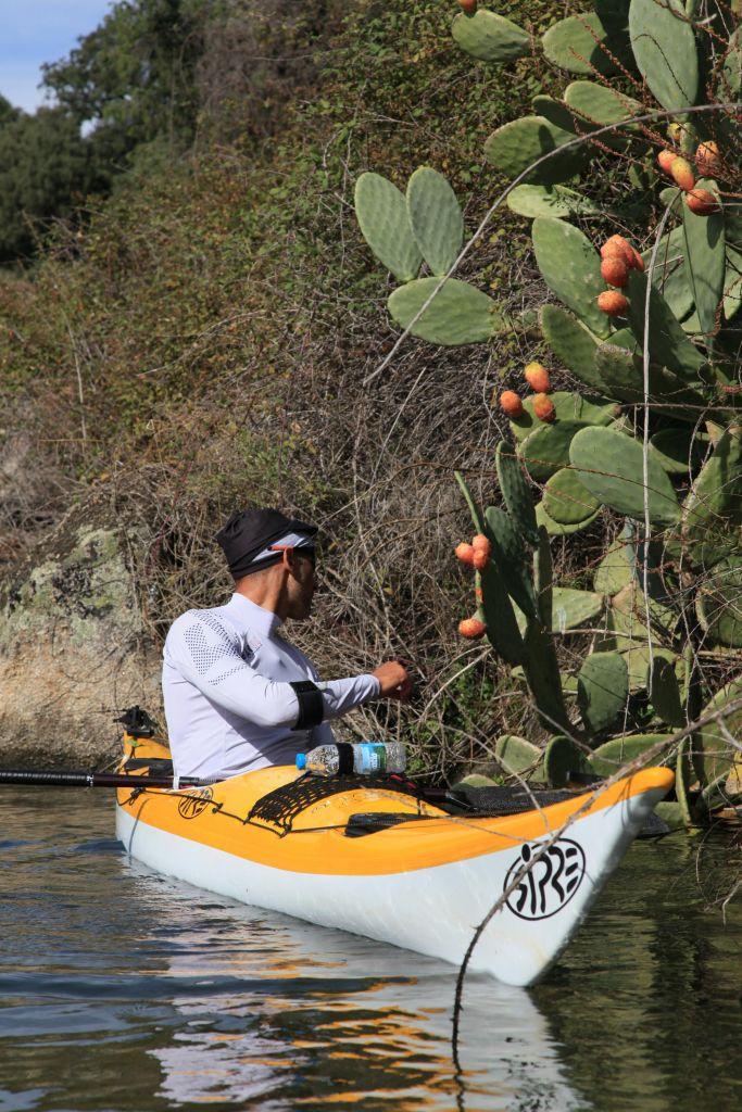 kayakiste cueillant une figue de barbarie