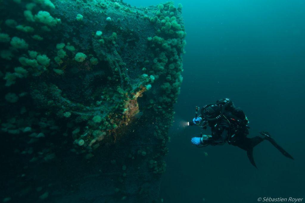 Plongeur devant la proue de l'épave du PLM27