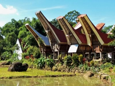 Bali, Sulawesi : La grande traversée en pays Toraja et Bajo