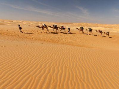 Des dunes de Chinguetti aux sources de Tergit