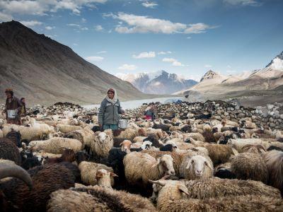 Trek dans la vallée de Shimshal