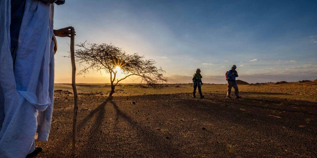 Dans le désert du Sahara, en Mauritanie