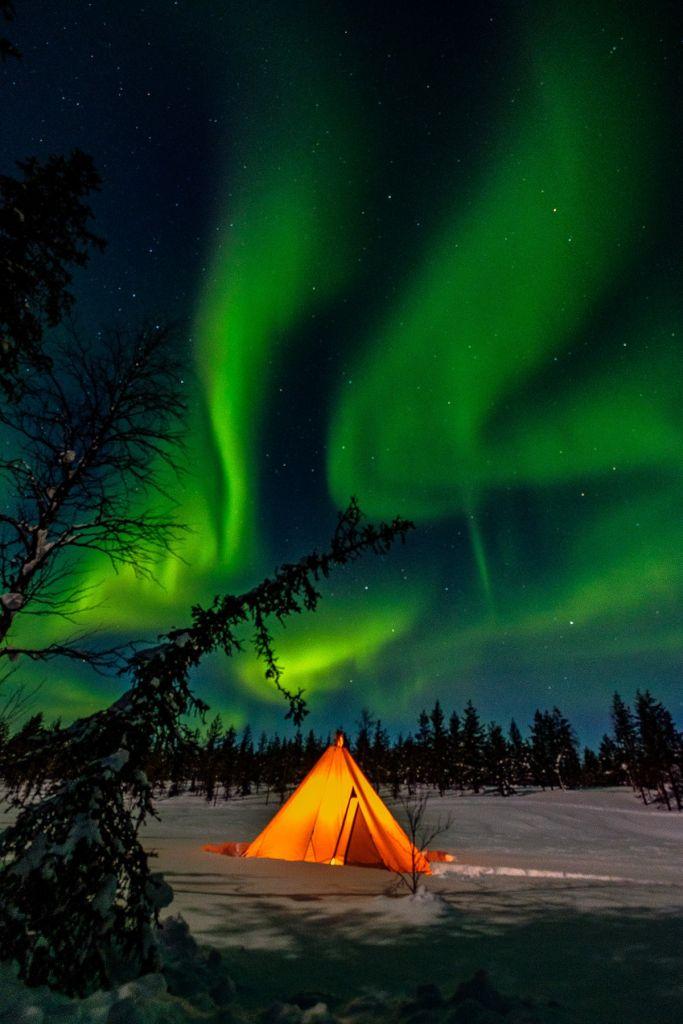 Observation d'une aurore boréale en Laponie pendant le voyage photo