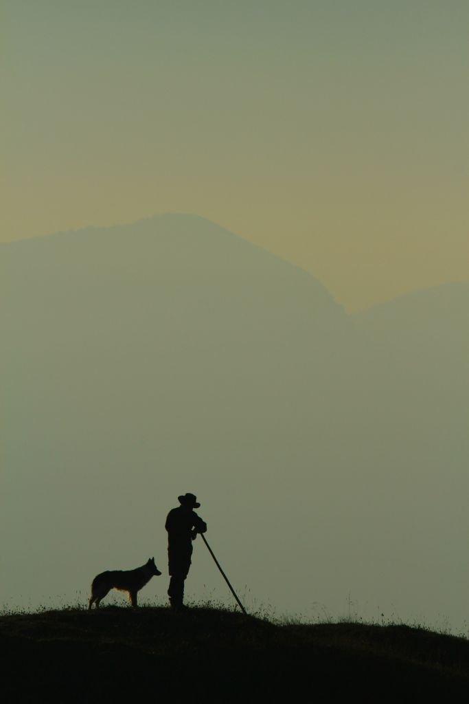 Berger avec son chien dans les Alpes